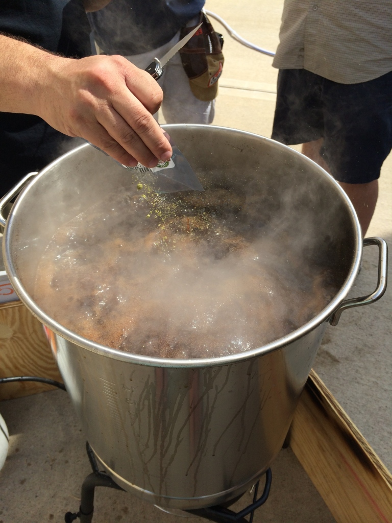 Adding Goudlings (Kent) hops at first boil.